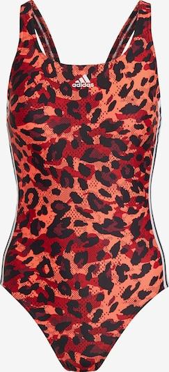 ADIDAS PERFORMANCE Badeanzug in rot / merlot / melone / schwarz, Produktansicht