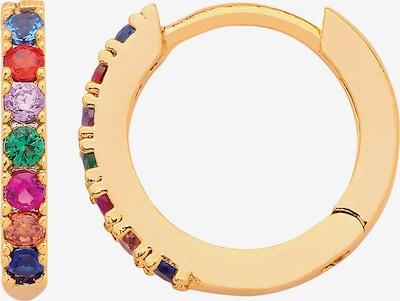 Estella Bartlett Ohrringe in gold / mischfarben, Produktansicht