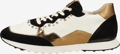 Högl Sneaker in braun / schwarz / weiß, Produktansicht