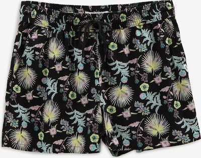 Pantaloni VANS pe mai multe culori, Vizualizare produs