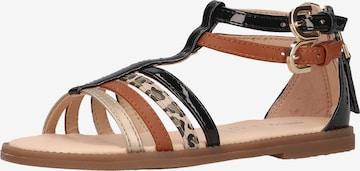 GEOX Sandale in Mischfarben