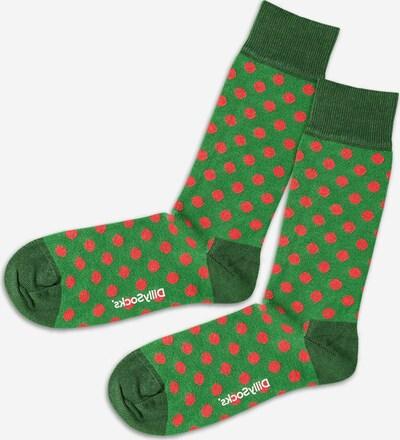 DillySocks Socken 'Fire Balls' in hellgrün / dunkelgrün / rot, Produktansicht