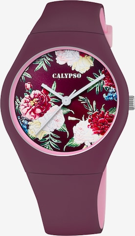 CALYPSO WATCHES Uhr in Lila