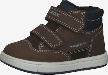 GEOX Sneakers in Brown