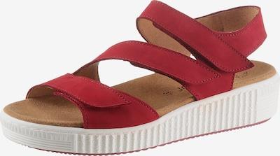 GABOR Sandale in rubinrot, Produktansicht