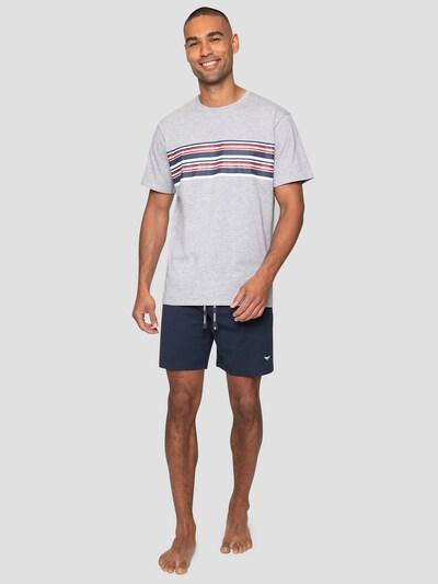 Threadbare Loungewear 'Jonas PJ Set' in grau, Produktansicht