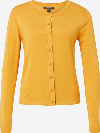 Esprit Collection Strickjacke in honig: Frontalansicht