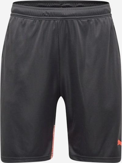 PUMA Shorts in grau / blutrot, Produktansicht