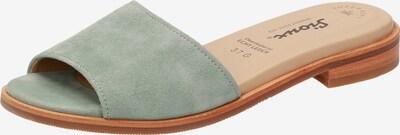 SIOUX Pantolette ' Cosinda-700 ' in pastellgrün, Produktansicht