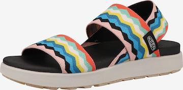 KEEN Sandaal in Gemengde kleuren