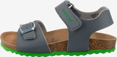 GEOX Sandale ' Ghita ' in grau / grasgrün, Produktansicht