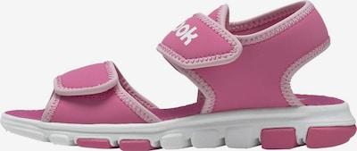 REEBOK Strand-/badschoen 'Wave Glider III' in de kleur Pink / Rosa / Wit, Productweergave