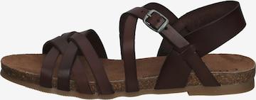 COSMOS COMFORT Sandalen in Braun