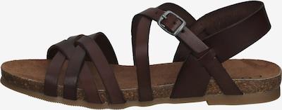 COSMOS COMFORT Sandalen in braun, Produktansicht