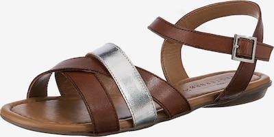 Paul Vesterbro Sandale in braun / silber, Produktansicht