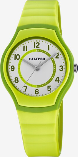 CALYPSO WATCHES Uhr in hellgrün, Produktansicht