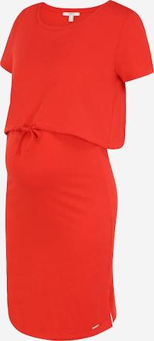 Esprit Maternity Kleid in Rot