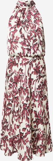 Adrianna Papell Kleid in bordeaux / schwarz / weiß, Produktansicht