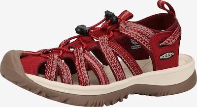 KEEN Sandales en rouge / blanc, Vue avec produit