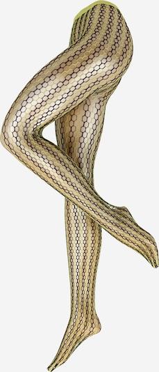 FALKE Najlonske hulahopke 'Hit 70' u limeta zelena / crna, Pregled proizvoda