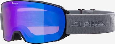Alpina Skibrille 'Nakiska' in grau / schwarz, Produktansicht
