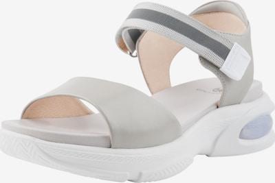 Ekonika Sandalen in grau, Produktansicht