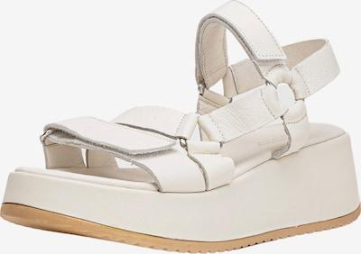 INUOVO Sandale in creme, Produktansicht