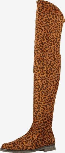 Rapisardi Overknee laarzen in de kleur Bruin / Donkerbruin, Productweergave