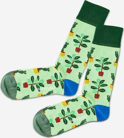 DillySocks Sokken in de kleur Lichtgroen / Gemengde kleuren, Productweergave