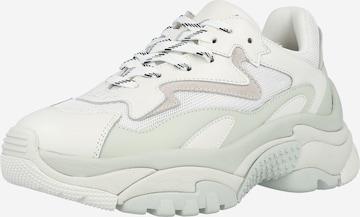 ASH Sneakers 'Addict' in White