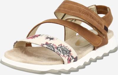 TOM TAILOR Páskové sandály - béžová / světlemodrá / koňaková / pitaya, Produkt