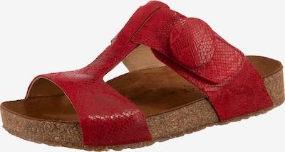 HAFLINGER Pantolette 'Mika' in rot, Produktansicht