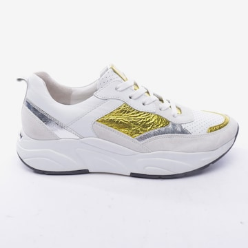 Kennel & Schmenger Sneakers & Trainers in 38,5 in Mixed colors