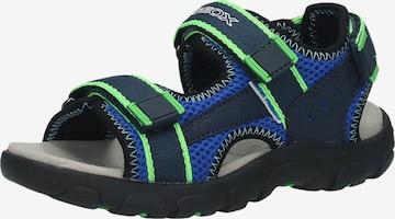 Chaussures ouvertes GEOX en bleu