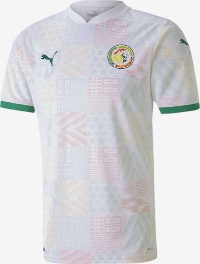 PUMA Tricot 'Senegal' in de kleur Grijs / Groen / Sinaasappel / Rood / Wit: Vooraanzicht