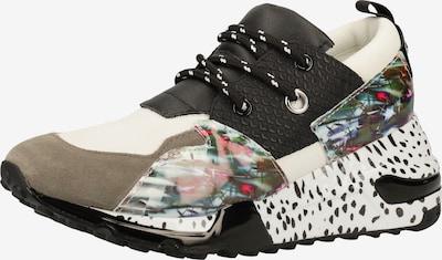 STEVE MADDEN Sneaker in mischfarben: Frontalansicht