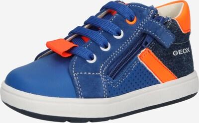 GEOX Tennarit 'BIGLIA' värissä sininen / laivastonsininen / oranssi, Tuotenäkymä