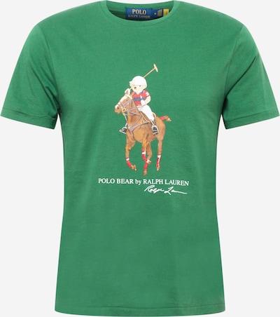 Polo Ralph Lauren Shirt in hellbraun / grün / weiß, Produktansicht