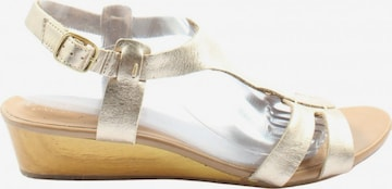 CLARKS Sandals & High-Heeled Sandals in 42 in Gold
