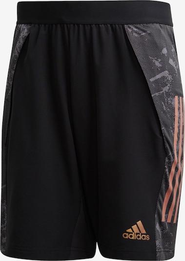 ADIDAS PERFORMANCE Hose in orange / schwarz: Frontalansicht