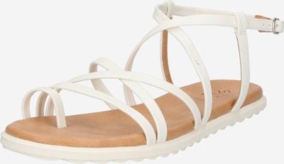 Sandale cu baretă 'ZINNIA' CALL IT SPRING pe alb, Vizualizare produs