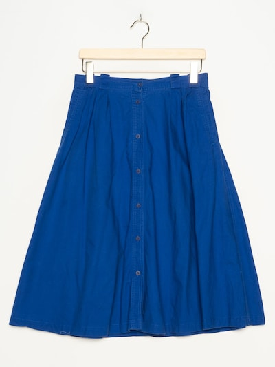 Chaus Skirt in L/29 in Azure, Item view