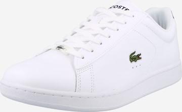 LACOSTE Sneaker 'CARNABY' in Weiß