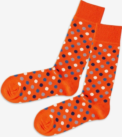 DillySocks Socken in blau / grau / weiß, Produktansicht