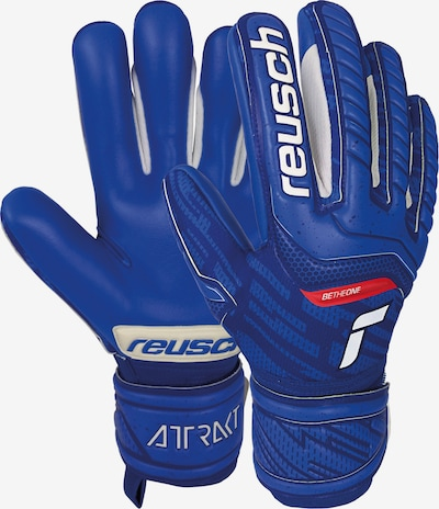 REUSCH Torwarthandschuhe Attrakt Grip Evolution' in blau, Produktansicht