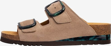 SCHOLL Pantolette 'Ilary' in Brown