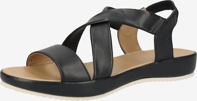 ARA Sandalen in nachtblau, Produktansicht