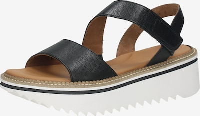 Paul Green Sandalen in schwarz, Produktansicht