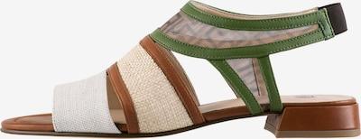 Högl Sandale 'Raffia' in beige / braun / grün / weiß, Produktansicht