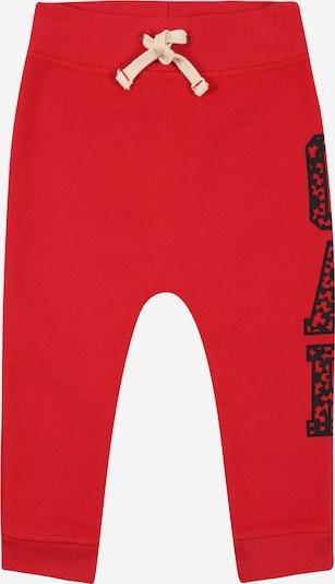 GAP Hose 'JAC CNY' in rot / schwarz, Produktansicht